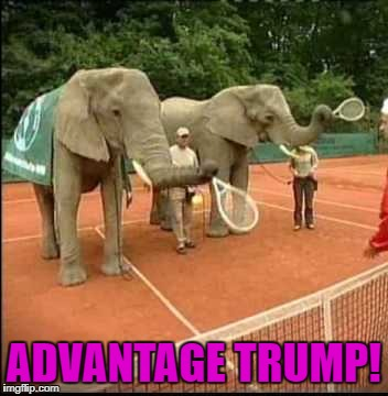 ADVANTAGE TRUMP! | made w/ Imgflip meme maker