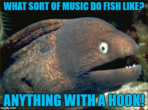 Sounds fishy to me! | WHAT SORT OF MUSIC DO FISH LIKE? ANYTHING WITH A HOOK! | image tagged in bad joke eel | made w/ Imgflip meme maker