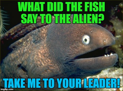 One for the fishos! | WHAT DID THE FISH SAY TO THE ALIEN? TAKE ME TO YOUR LEADER! | image tagged in bad joke eel | made w/ Imgflip meme maker