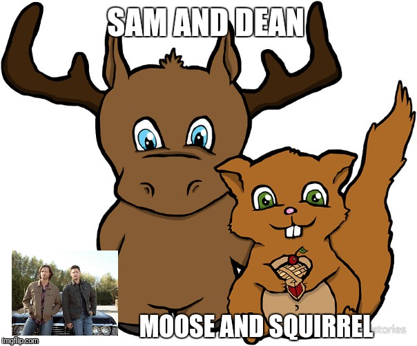 Moose and Squirrel |  SAM AND DEAN; MOOSE AND SQUIRREL | image tagged in moose and squirrel,supernatural | made w/ Imgflip meme maker