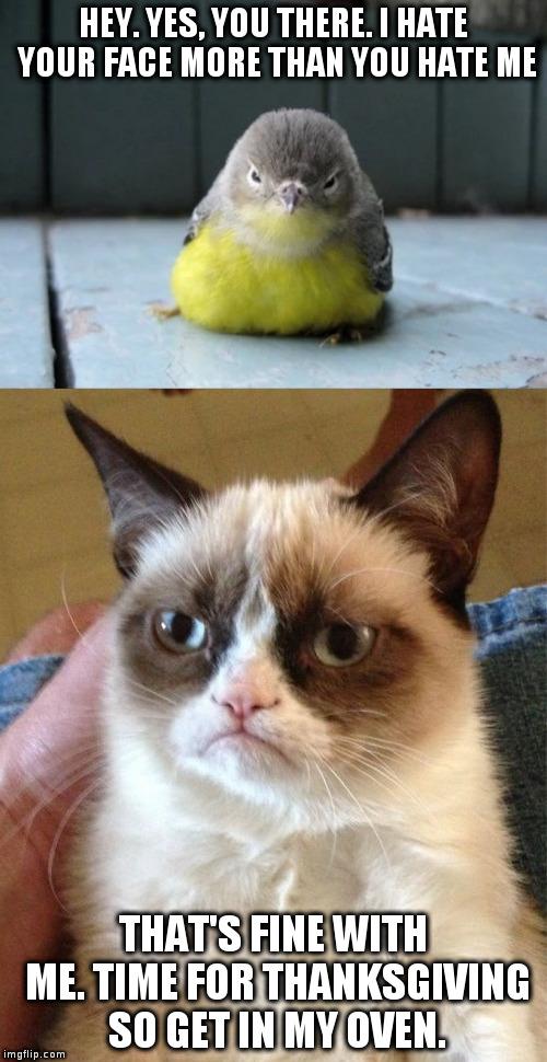 Grumpy Cat Hello Meme