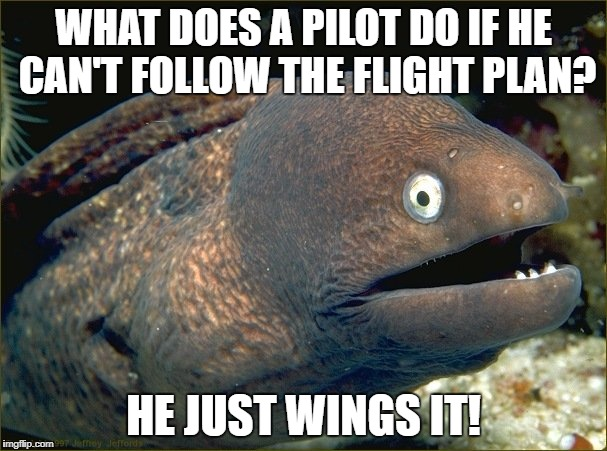Sorry not sorry! | WHAT DOES A PILOT DO IF HE CAN'T FOLLOW THE FLIGHT PLAN? HE JUST WINGS IT! | image tagged in bad joke eel,memes | made w/ Imgflip meme maker