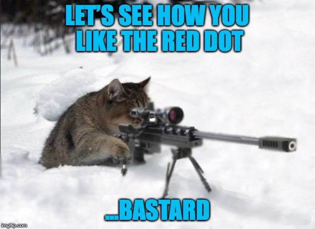 Shine a light on you | LET'S SEE HOW YOU LIKE THE RED DOT ...BASTARD | image tagged in catsniper,red dot | made w/ Imgflip meme maker