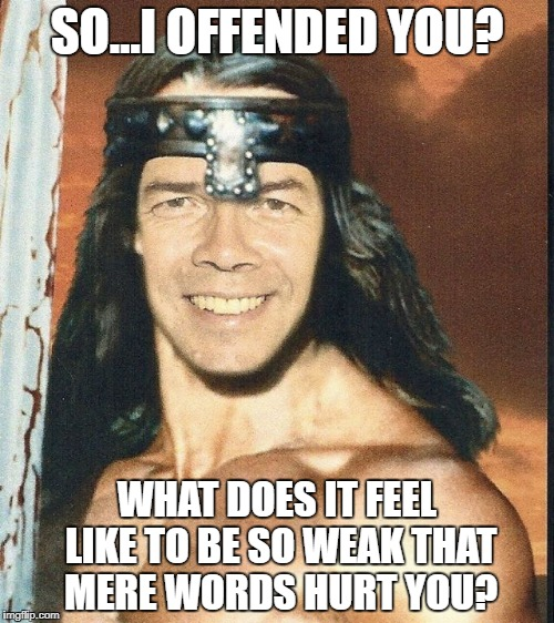 So...I offended you? | SO...I OFFENDED YOU? WHAT DOES IT FEEL LIKE TO BE SO WEAK THAT MERE WORDS HURT YOU? | image tagged in easilyoffended,sjw,snowflakes | made w/ Imgflip meme maker