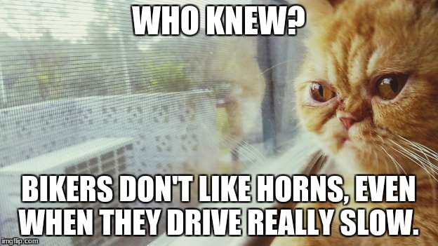 WHO KNEW? BIKERS DON'T LIKE HORNS, EVEN WHEN THEY DRIVE REALLY SLOW. | image tagged in who knew | made w/ Imgflip meme maker