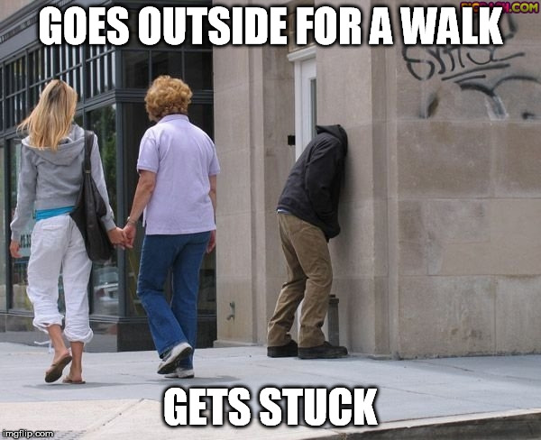GOES OUTSIDE FOR A WALK GETS STUCK | made w/ Imgflip meme maker