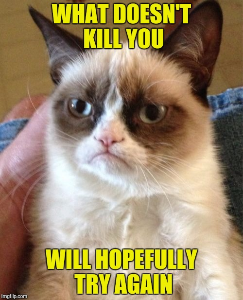 Grumpy Cat Meme | WHAT DOESN'T KILL YOU WILL HOPEFULLY TRY AGAIN | image tagged in memes,grumpy cat | made w/ Imgflip meme maker