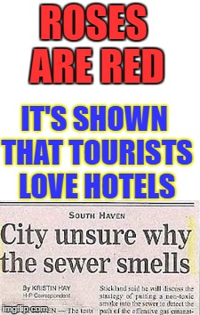 You all loved these before so here is another | ROSES ARE RED IT'S SHOWN THAT TOURISTS LOVE HOTELS | image tagged in memes,other,newspaper,headline,poem,i didsaythatiwasputtingtheseineverymeme | made w/ Imgflip meme maker