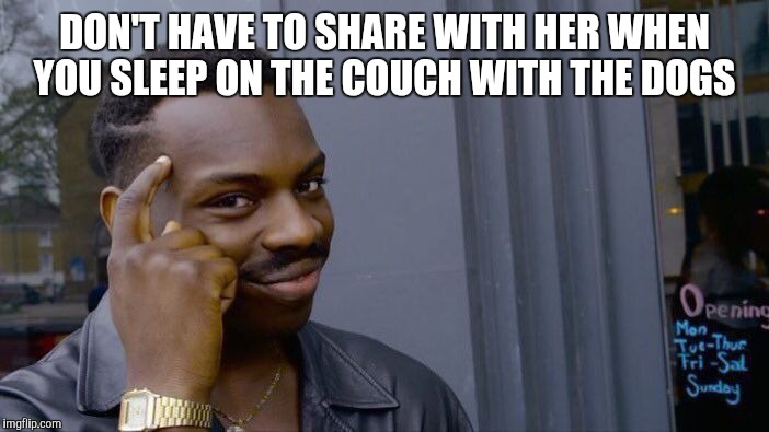Roll Safe Think About It Meme | DON'T HAVE TO SHARE WITH HER WHEN YOU SLEEP ON THE COUCH WITH THE DOGS | image tagged in memes,roll safe think about it | made w/ Imgflip meme maker