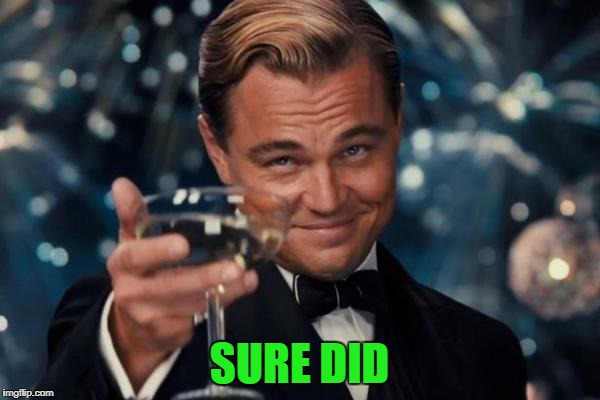 Leonardo Dicaprio Cheers Meme | SURE DID | image tagged in memes,leonardo dicaprio cheers | made w/ Imgflip meme maker