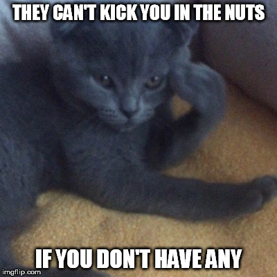 THEY CAN'T KICK YOU IN THE NUTS IF YOU DON'T HAVE ANY | made w/ Imgflip meme maker