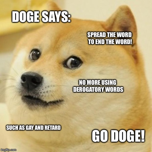 Doge Meme | DOGE SAYS: SPREAD THE WORD TO END THE WORD! NO MORE USING DEROGATORY WORDS SUCH AS GAY AND RETARD GO DOGE! | image tagged in memes,doge | made w/ Imgflip meme maker