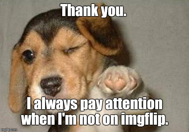 Thank you. I always pay attention when I'm not on imgflip. | made w/ Imgflip meme maker