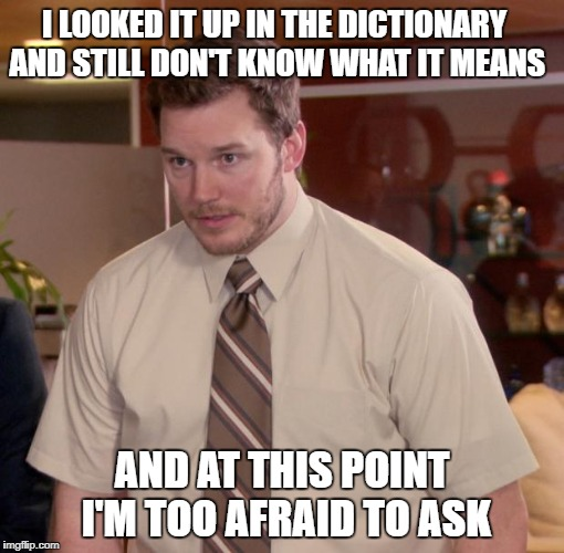 I LOOKED IT UP IN THE DICTIONARY AND STILL DON'T KNOW WHAT IT MEANS AND AT THIS POINT I'M TOO AFRAID TO ASK | made w/ Imgflip meme maker