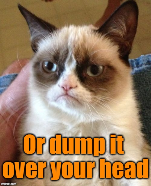 Grumpy Cat Meme | Or dump it over your head | image tagged in memes,grumpy cat | made w/ Imgflip meme maker
