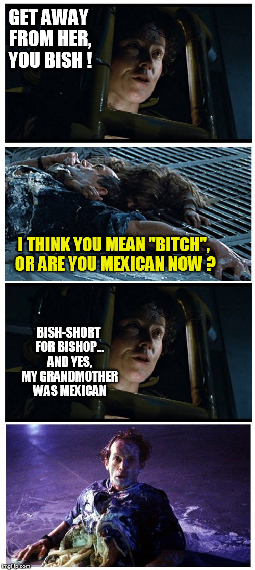 "GET AWAY FROM HER, YOU BISH ! I THINK YOU MEAN ""B**CH"", OR ARE YOU MEXICAN NOW ? BISH-SHORT FOR BISHOP... AND YES, MY GRANDMOTHER WAS MEXICA 