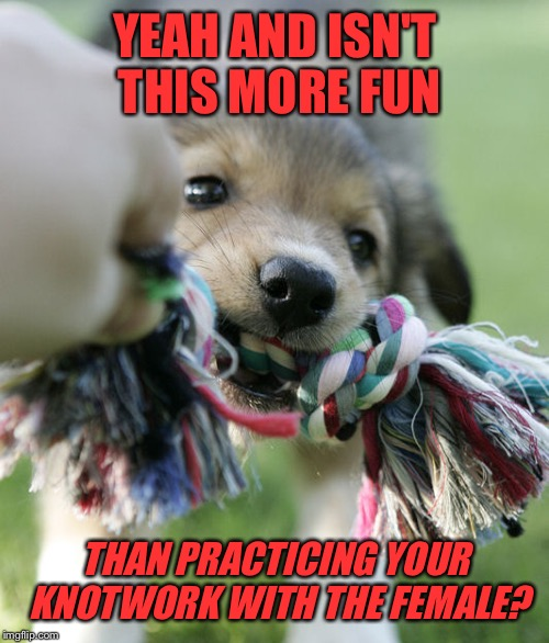 YEAH AND ISN'T THIS MORE FUN THAN PRACTICING YOUR KNOTWORK WITH THE FEMALE? | made w/ Imgflip meme maker