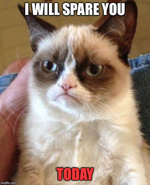 Grumpy Cat Meme | I WILL SPARE YOU TODAY | image tagged in memes,grumpy cat | made w/ Imgflip meme maker