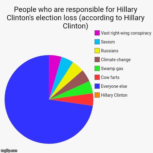 People who are responsible for Hillary Clinton's election loss (according to Hillary Clinton) | Hillary Clinton, Everyone else, Cow farts, S | image tagged in funny,pie charts,hillary clinton | made w/ Imgflip pie chart maker