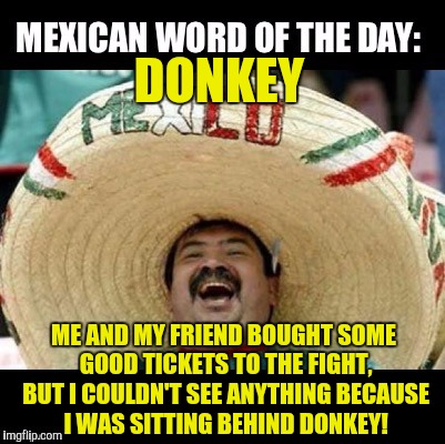 Mexican Word of the Day (LARGE) | DONKEY ME AND MY FRIEND BOUGHT SOME GOOD TICKETS TO THE FIGHT, BUT I COULDN'T SEE ANYTHING BECAUSE I WAS SITTING BEHIND DONKEY! | image tagged in mexican word of the day large | made w/ Imgflip meme maker