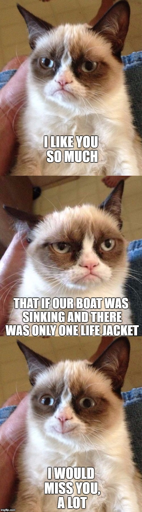 Bad Pun Grumpy Cat | I LIKE YOU SO MUCH I WOULD MISS YOU, A LOT THAT IF OUR BOAT WAS SINKING AND THERE WAS ONLY ONE LIFE JACKET | image tagged in bad pun grumpy cat | made w/ Imgflip meme maker