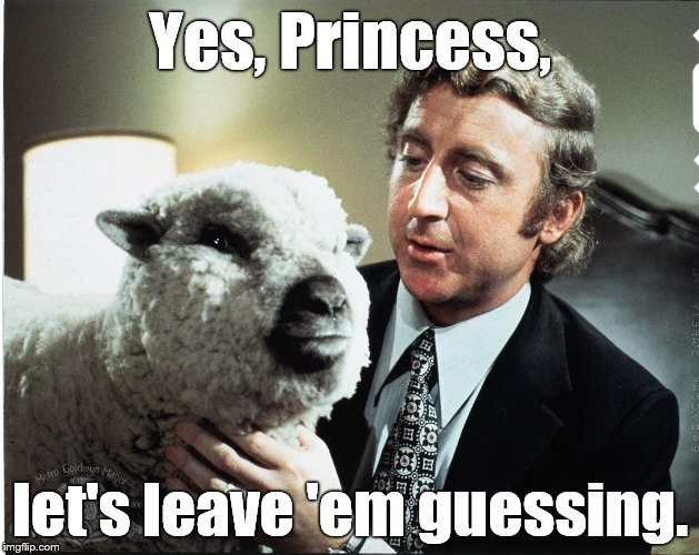 Baaa | Yes, Princess, let's leave 'em guessing. | image tagged in baaa | made w/ Imgflip meme maker