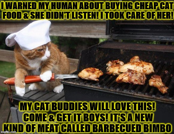 I WARNED MY HUMAN ABOUT BUYING CHEAP CAT FOOD & SHE DIDN'T LISTEN! I TOOK CARE OF HER! MY CAT BUDDIES WILL LOVE THIS! COME & GET IT BOYS! IT | image tagged in bimbo grill | made w/ Imgflip meme maker