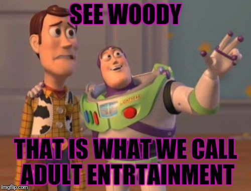 X, X Everywhere Meme | SEE WOODY THAT IS WHAT WE CALL ADULT ENTRTAINMENT | image tagged in memes,x,x everywhere,x x everywhere | made w/ Imgflip meme maker