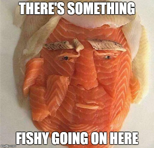 If you thought all the professional politicians were fishy... | THERE'S SOMETHING FISHY GOING ON HERE | image tagged in fishy,trump,donald trump | made w/ Imgflip meme maker