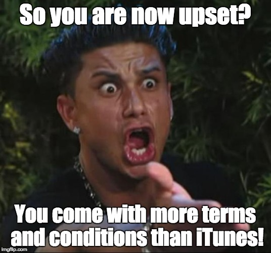 DJ Pauly D Meme | So you are now upset? You come with more terms and conditions than iTunes! | image tagged in memes,dj pauly d | made w/ Imgflip meme maker