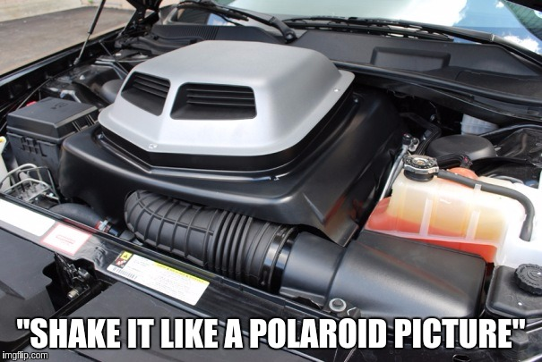 """SHAKE IT LIKE A POLAROID PICTURE"" 