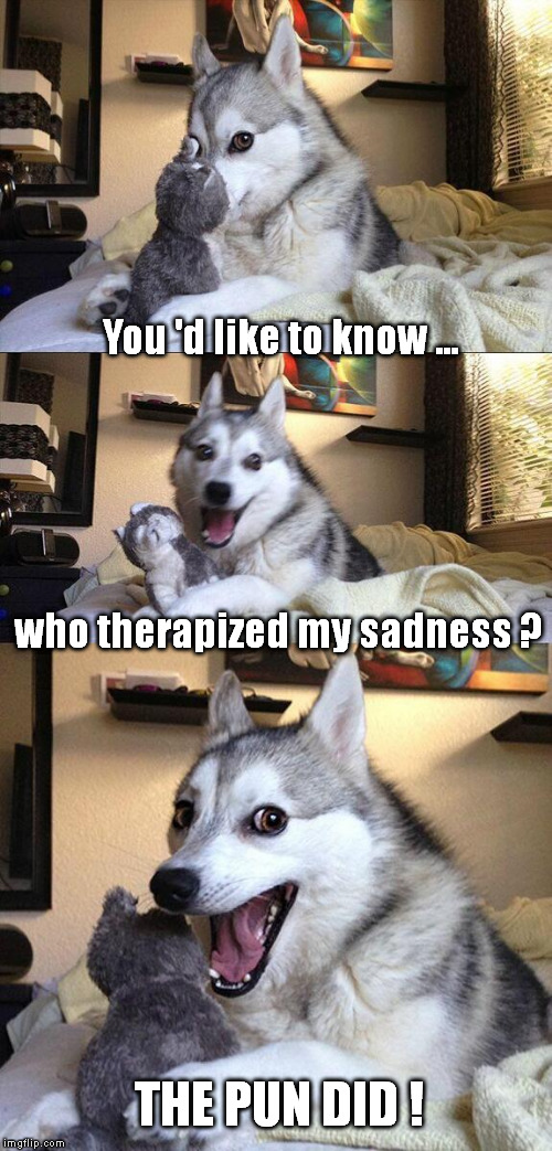 Bad Pun Dog Cure | You 'd like to know ... who therapized my sadness ? THE PUN DID ! | image tagged in memes,bad pun dog,therapy,therapist | made w/ Imgflip meme maker