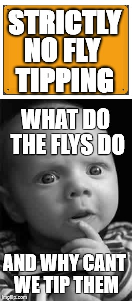 no fly tipping | STRICTLY NO FLY TIPPING WHAT DO THE FLYS DO AND WHY CANT WE TIP THEM | image tagged in deep thoughts | made w/ Imgflip meme maker