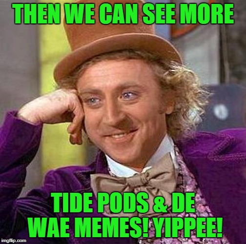 Creepy Condescending Wonka Meme | THEN WE CAN SEE MORE TIDE PODS & DE WAE MEMES! YIPPEE! | image tagged in memes,creepy condescending wonka | made w/ Imgflip meme maker