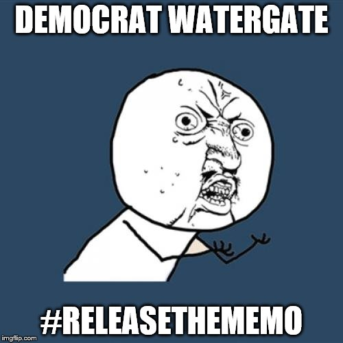 Concerned citizen | DEMOCRAT WATERGATE #RELEASETHEMEMO | image tagged in memes,y u no,releasethememo | made w/ Imgflip meme maker