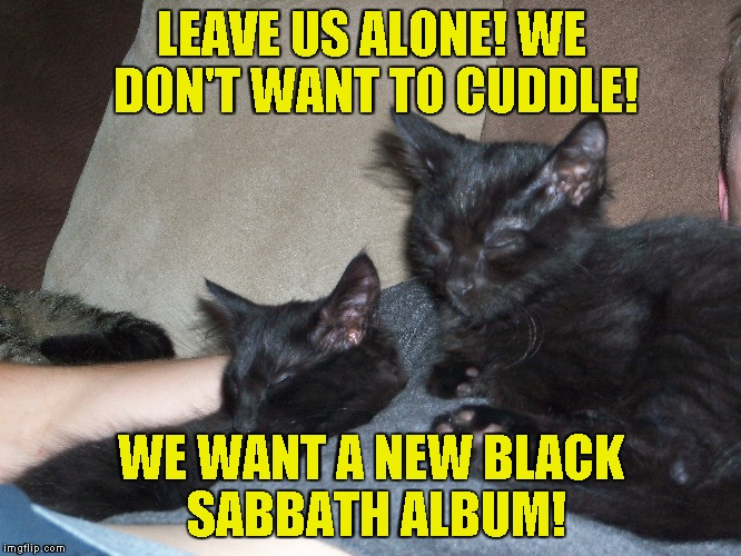 The most brutal cats in existence! Other than my cat,of course! | LEAVE US ALONE! WE DON'T WANT TO CUDDLE! WE WANT A NEW BLACK SABBATH ALBUM! | image tagged in grumpy cats,memes,funny,black sabbath,metal,powermetalhead | made w/ Imgflip meme maker