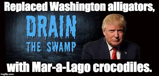 Trump's Swamp | Replaced Washington alligators, with Mar-a-Lago crocodiles. | image tagged in lobbyists donald trump rex tillerson steve mnuchin betsy devos ryan zinke wilbur ross tom price scott pruitt | made w/ Imgflip meme maker