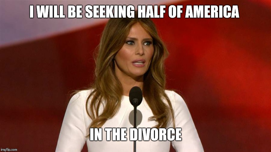 Milania | I WILL BE SEEKING HALF OF AMERICA IN THE DIVORCE | image tagged in milania | made w/ Imgflip meme maker
