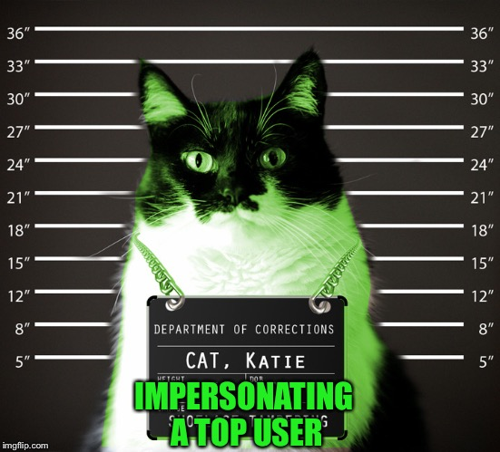 RayCat Incarcerated | IMPERSONATING A TOP USER | image tagged in raycat incarcerated | made w/ Imgflip meme maker