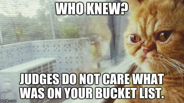 WHO KNEW? JUDGES DO NOT CARE WHAT WAS ON YOUR BUCKET LIST. | image tagged in who knew | made w/ Imgflip meme maker