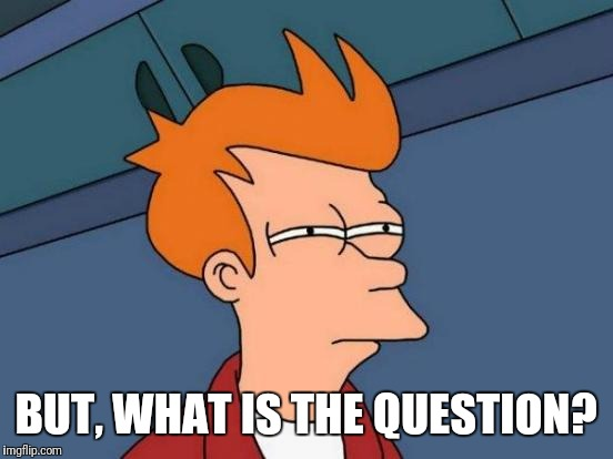 Futurama Fry Meme | BUT, WHAT IS THE QUESTION? | image tagged in memes,futurama fry | made w/ Imgflip meme maker