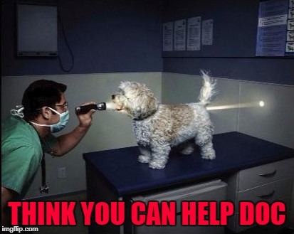 THINK YOU CAN HELP DOC | made w/ Imgflip meme maker