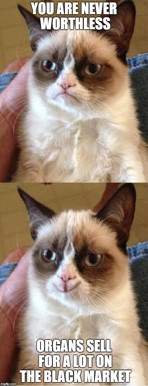 Grumpy Cat 2x Smile | YOU ARE NEVER WORTHLESS ORGANS SELL FOR A LOT ON THE BLACK MARKET | image tagged in grumpy cat 2x smile | made w/ Imgflip meme maker