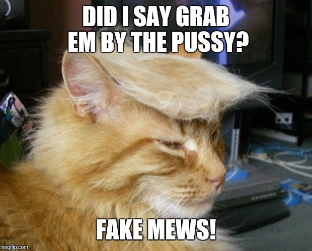 DID I SAY GRAB EM BY THE PUSSY? FAKE MEWS! | image tagged in cat trump,fake news,mew,mews,grab them by the pussy,fake mews | made w/ Imgflip meme maker