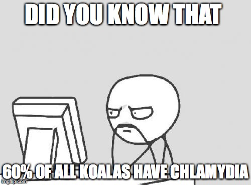 Computer Guy Meme | DID YOU KNOW THAT 60% OF ALL KOALAS HAVE CHLAMYDIA | image tagged in memes,computer guy | made w/ Imgflip meme maker