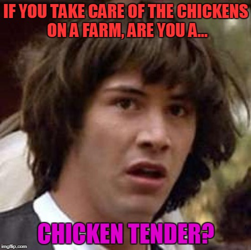 Look At All These Chickens! | IF YOU TAKE CARE OF THE CHICKENS ON A FARM, ARE YOU A... CHICKEN TENDER? | image tagged in memes,conspiracy keanu | made w/ Imgflip meme maker