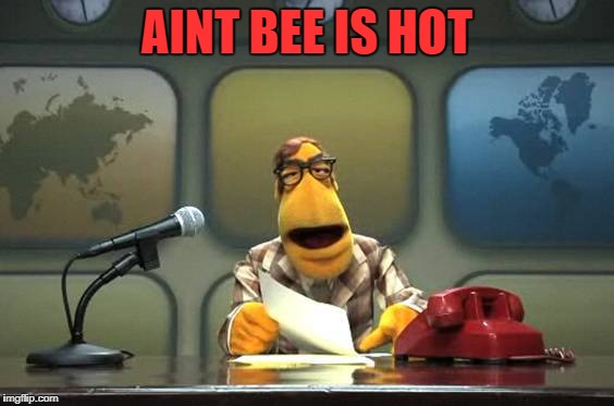 news! | AINT BEE IS HOT | image tagged in news | made w/ Imgflip meme maker