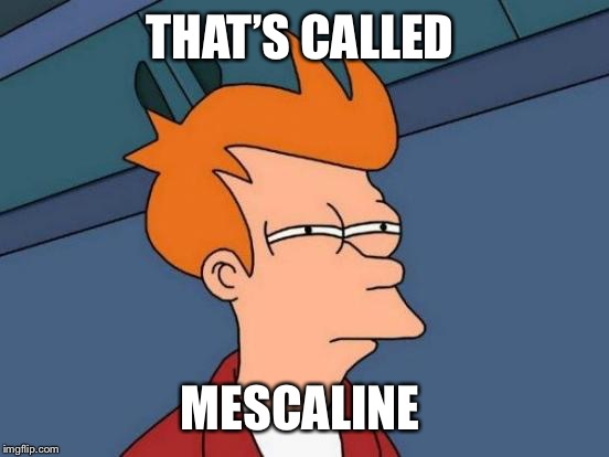 Futurama Fry Meme | THAT'S CALLED MESCALINE | image tagged in memes,futurama fry | made w/ Imgflip meme maker