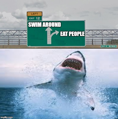 Shark exit left | SWIM AROUND EAT PEOPLE | image tagged in funny memes,great white shark,left exit 12 off ramp | made w/ Imgflip meme maker
