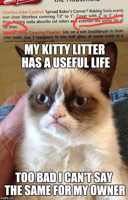 Saw this on the back of my baking soda... | MY KITTY LITTER HAS A USEFUL LIFE TOO BAD I CAN'T SAY THE SAME FOR MY OWNER | image tagged in baking soda,grumpy cat,kitty litter | made w/ Imgflip meme maker
